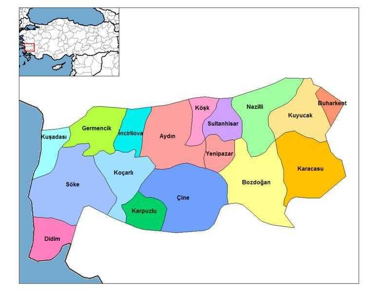 Aydın'da Hangi Başkan Kaç Oy Aldı?